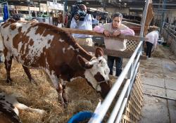 January 8, 2020: Senator Costa attends the 104th Pennsylvania Farm Show.