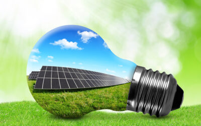 Legislators Introduce Local Solar Program in House and Senate