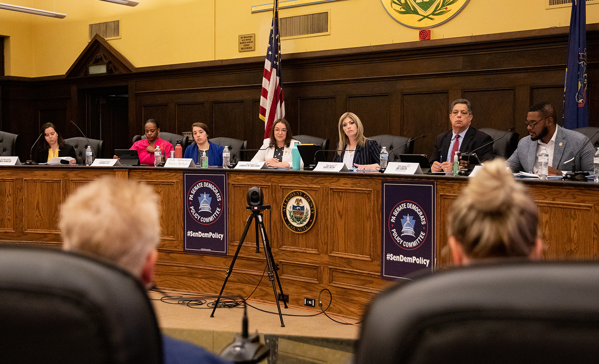 Policy Hearing - Health Care Crisis